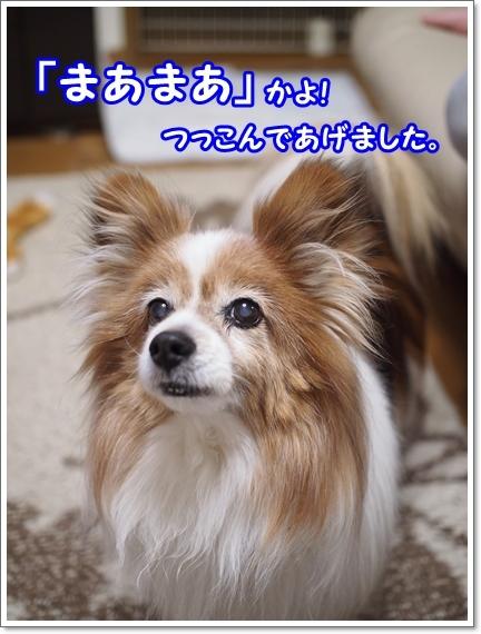 d0013149_23264357.jpg