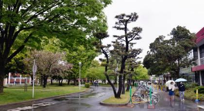新潟行っても長野に行っても帰りはいつもここまで一般道........._b0194185_21421460.jpg