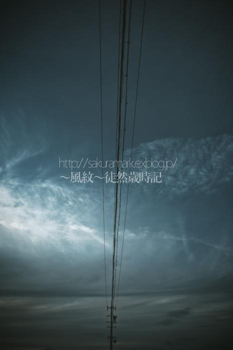 sky line_f0235723_21403025.jpg