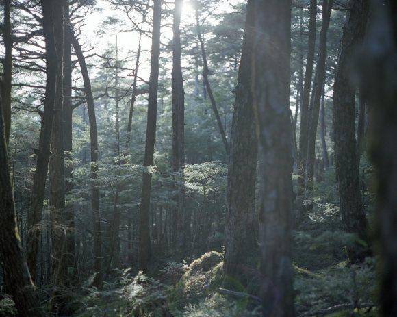 フィルム登山部で金峰山_f0251840_09351928.jpg