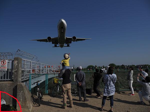 大阪空港千里川の画像処理_e0022047_22541215.jpg