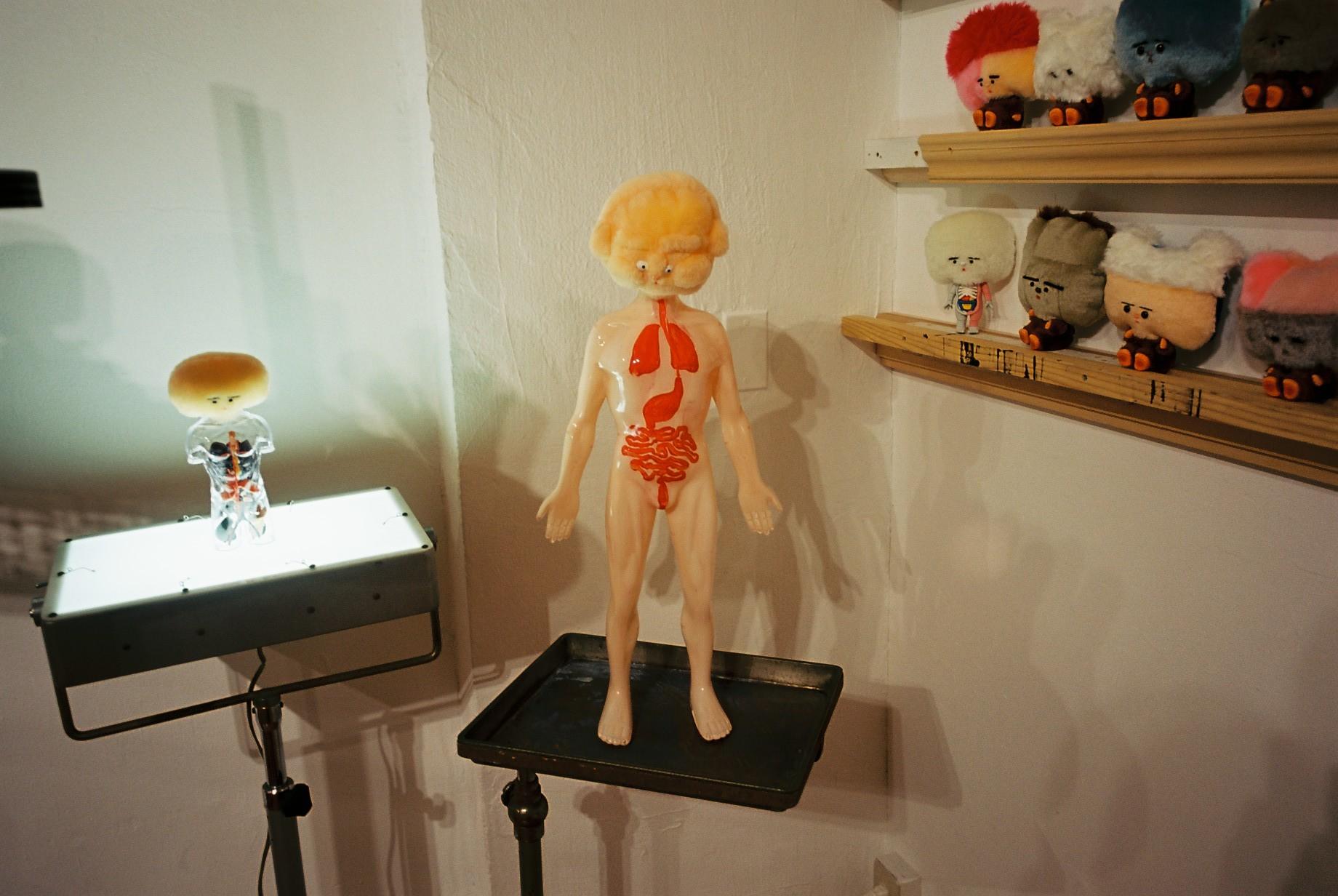 人体解剖展_c0195272_23523625.jpeg