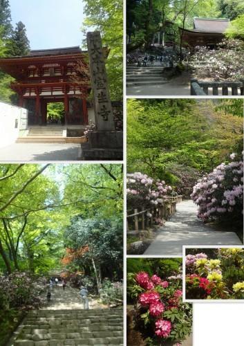 奈良、、、寺巡り2日目_e0129400_18283558.jpg
