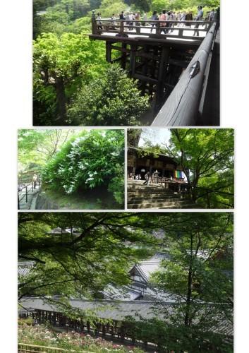 奈良、、、寺巡り2日目_e0129400_18534161.jpg
