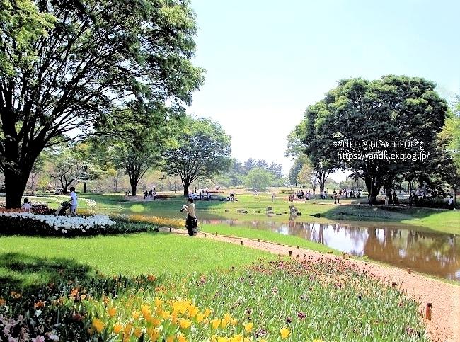 新緑の昭和記念公園_d0083623_14054949.jpg