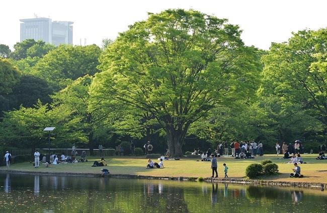 新緑の中で、、、_d0264733_12125120.jpg
