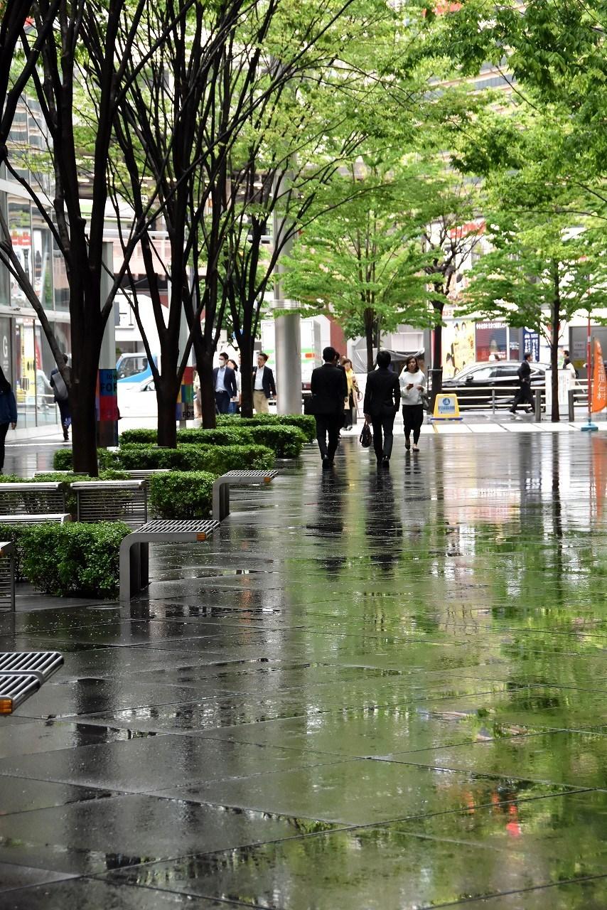 雨上がりの新緑@大手町_d0065116_22122293.jpg