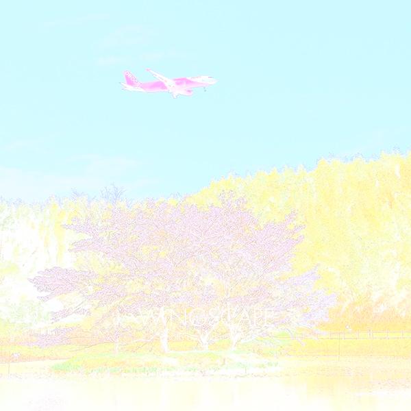 f0300225_11195847.jpg