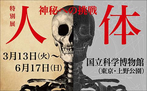 国立科学博物館「人体展」_d0228130_05531137.jpg