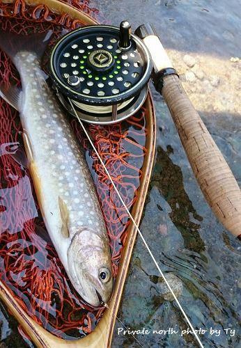 本日の釣り_d0261148_20414489.jpg