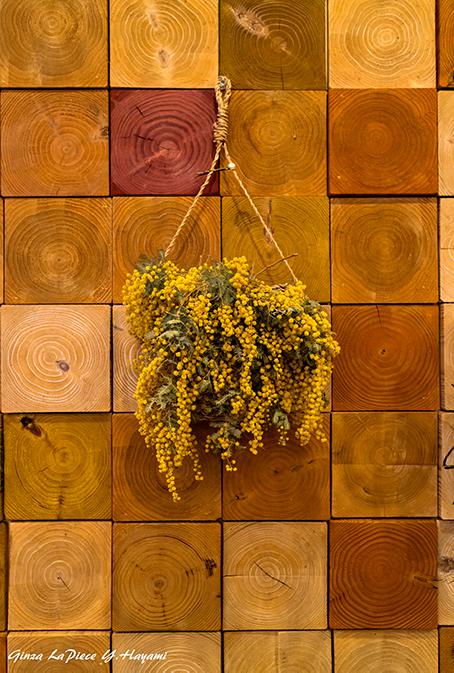 花のある風景 ドライのミモザ_b0133053_01213578.jpg
