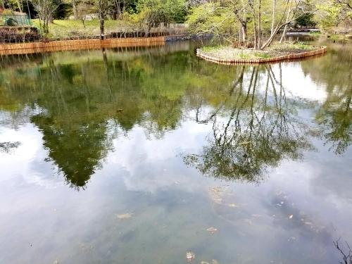 雲場池*5ヶ月ぶりにリフレッシュオープン♪_f0236260_15291304.jpg