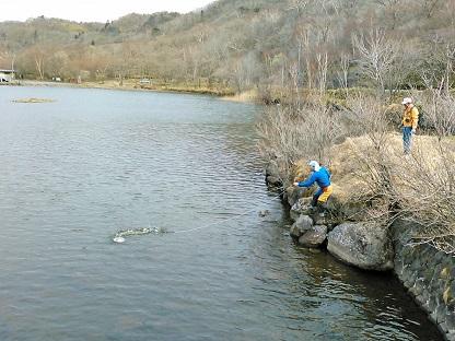 湖面に落ちた帽子の救出作戦_e0077899_16562298.jpg