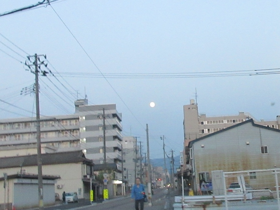 夕日、夕月、くーちゃんまんま_a0203003_19364431.jpg