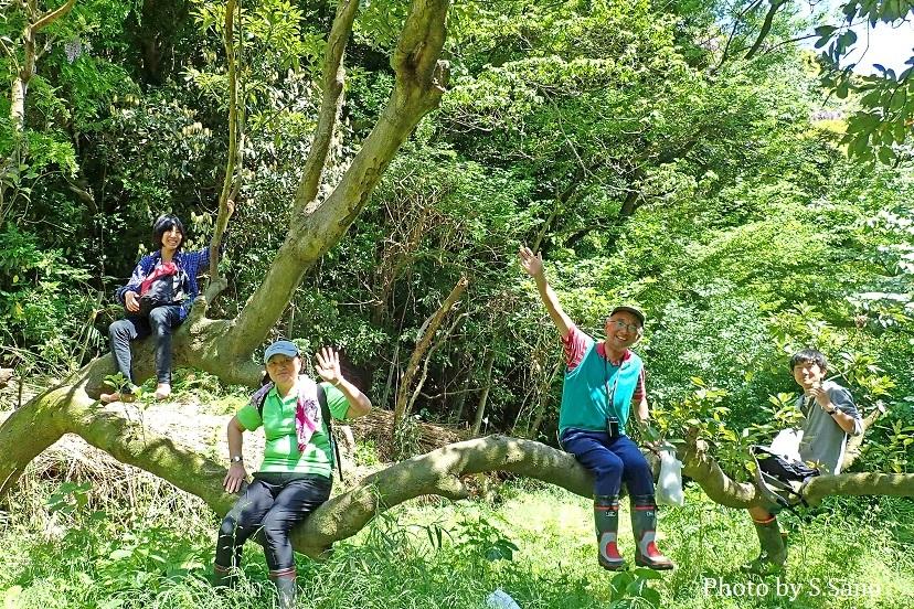 三浦半島の里山(2018年4月)_b0348205_22341440.jpg
