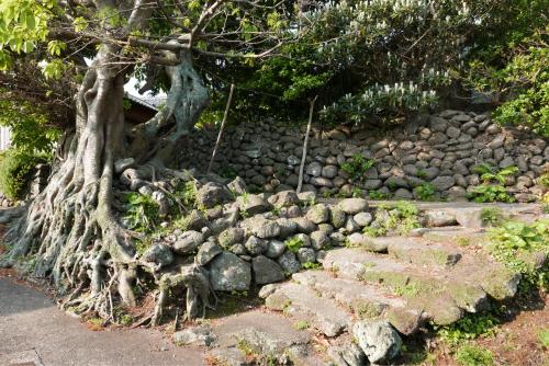 海界の村を歩く 東シナ海 小値賀大島_d0147406_05090729.jpg
