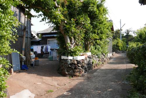 海界の村を歩く 東シナ海 小値賀大島_d0147406_05093369.jpg