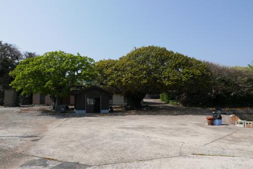 海界の村を歩く 東シナ海 納島_d0147406_20463809.jpg