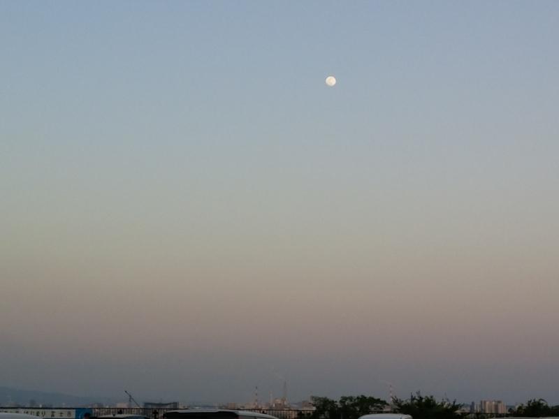 明日4/30☆遠隔無料一斉ヒーリング~満月~受付を始めます(^^)/_f0372313_11054630.jpg