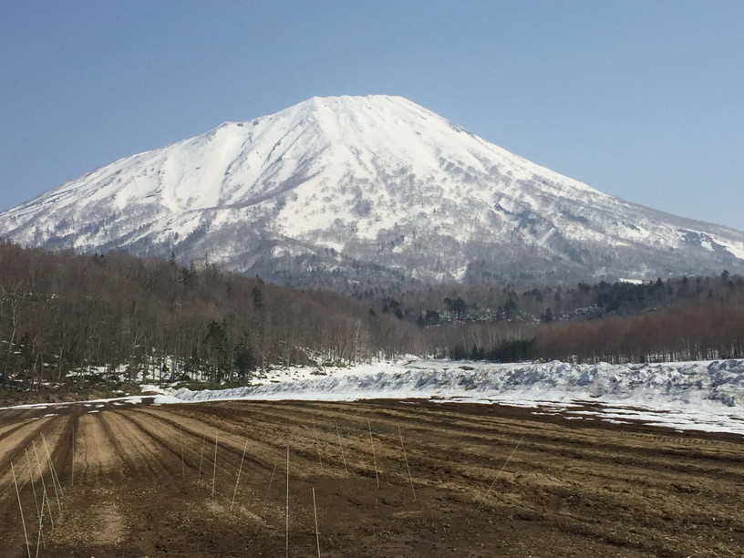 "2018年4月 『ニセコ、羊蹄山で春スキー』 April 2018 ""Spring Ski in Niseko and Mt Yotei\""_c0219616_13021579.jpg"