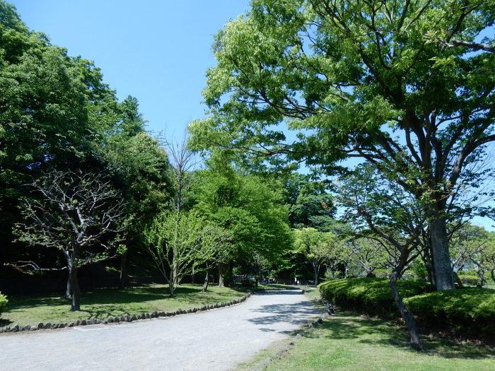 緑が濃くなった新緑の新林公園 2018_04_28_b0221219_21283624.jpg
