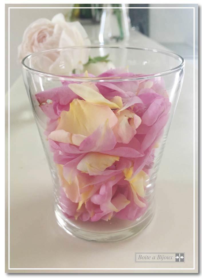 庭のバラたち_d0286255_19103683.jpg