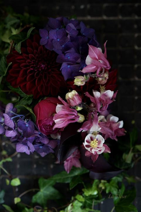 お庭のオダマキ_f0127281_12063653.jpg