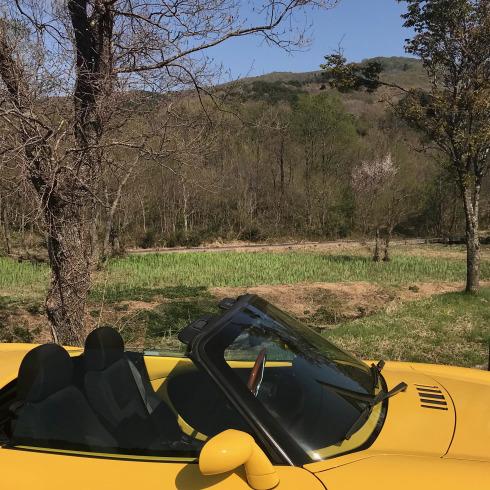 県北の高原にも春が来た_f0099102_10393404.jpg