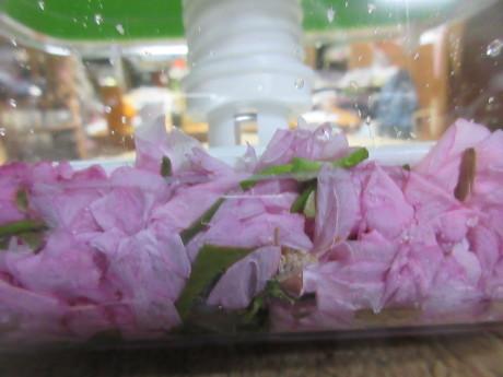 桜を漬ける、高菜を漬ける_a0203003_10203879.jpg