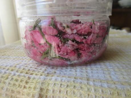桜を漬ける、高菜を漬ける_a0203003_13082175.jpg
