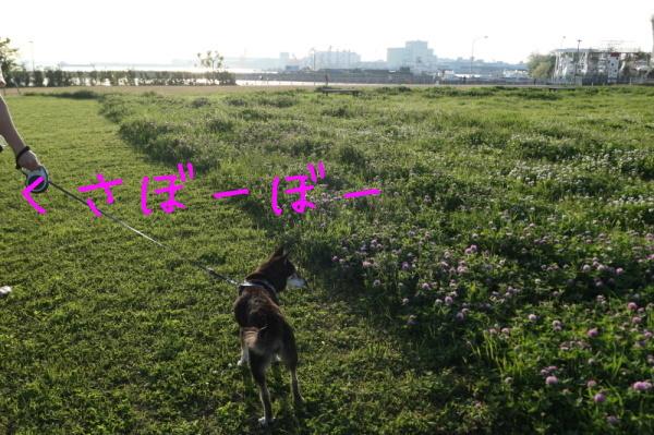 f0369014_13405780.jpg