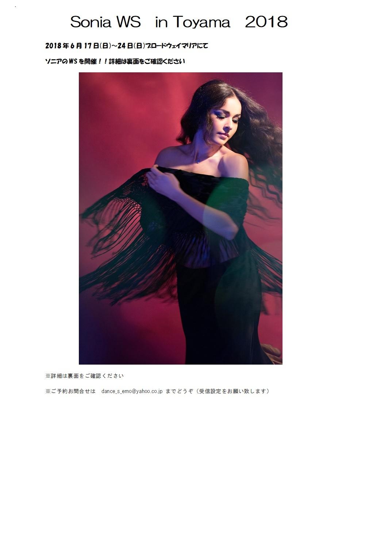 ソニアWS in 富山 2018 詳細 参加者募集中!!_c0201916_10051641.jpg