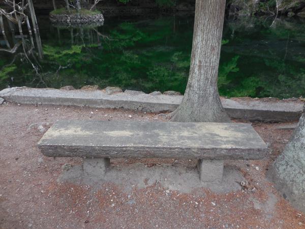 今日のベンチ №120_e0097534_15581597.jpg