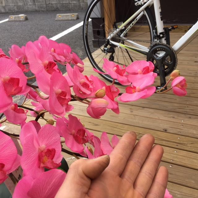 GIANT社 ロードバイク用 超コンパクトスタンド_f0091343_1392119.jpg