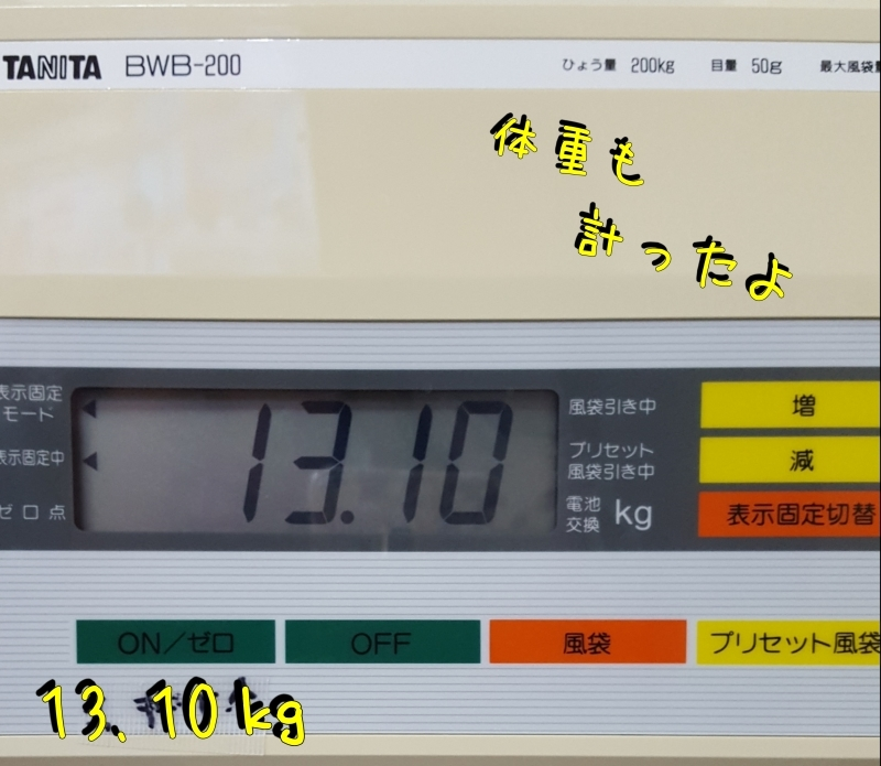 a0353444_15071373.jpg
