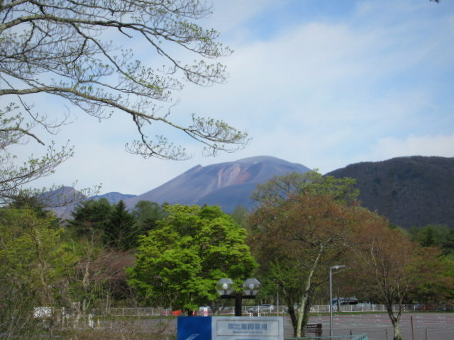 4月30日の桜と新緑*軽井沢の桜もいよいよ見納めです。_f0236260_09504663.jpg