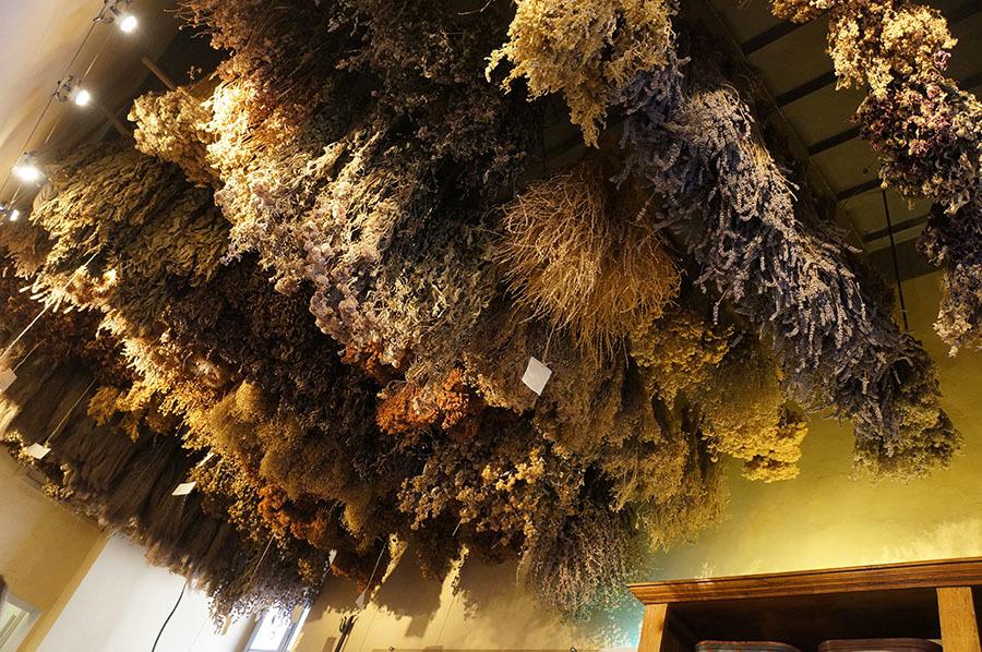 ハーブ博物館〜サンセポルクロ_f0106597_06170621.jpg