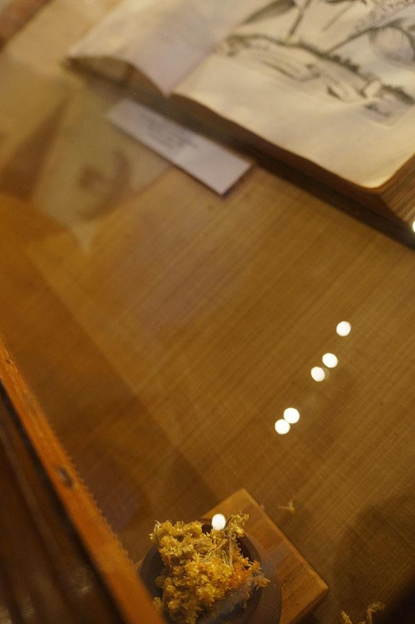 ハーブ博物館〜サンセポルクロ_f0106597_06384173.jpg