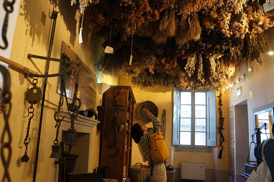 ハーブ博物館〜サンセポルクロ_f0106597_06425146.jpg