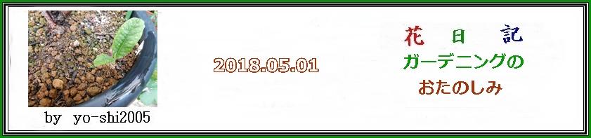 e0033229_196764.jpg