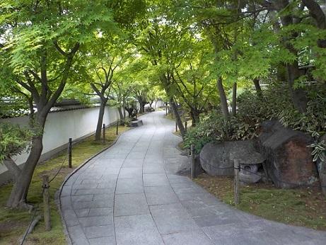 新緑の不洗観音寺_f0045132_14122788.jpg
