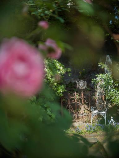 Jardin éternel ~永遠の庭 ~オールドレンズの眼差し_c0203401_09523598.jpg