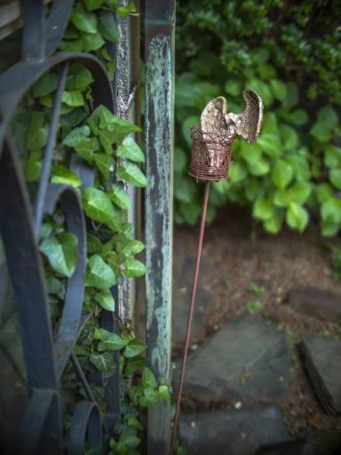 Jardin éternel ~永遠の庭 ~オールドレンズの眼差し_c0203401_10065783.jpg