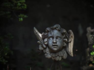Jardin éternel ~永遠の庭 ~オールドレンズの眼差し_c0203401_10075514.jpg
