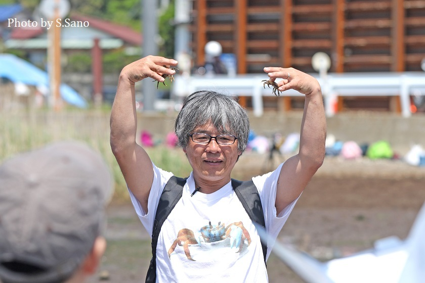 干潟のカニ観察会(2018年5月)_b0348205_22452373.jpg