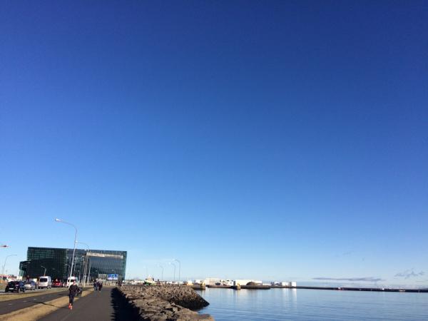 アイスランド⑤ホエールウオッチング_f0362457_21173051.jpg