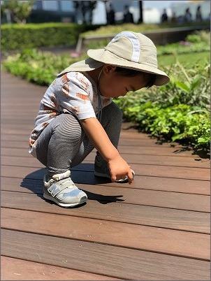 【 おすすめ夏の子ども帽子 】_c0199166_11534770.jpg