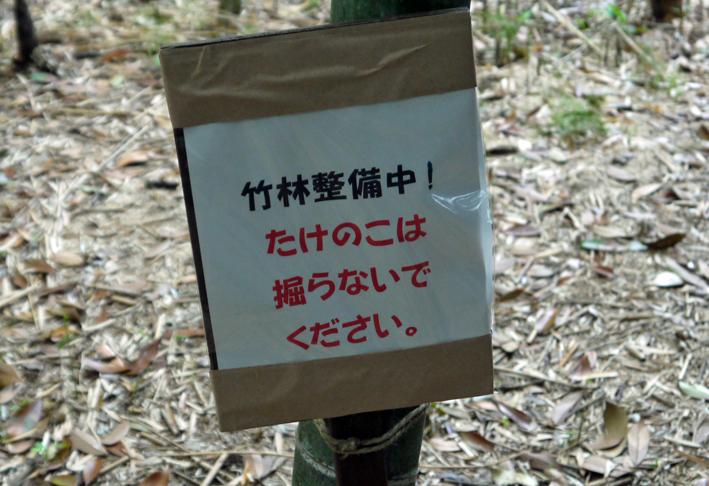 神奈川県所有の竹林に「筍掘らないで」の掲示板4・27_c0014967_18501327.jpg