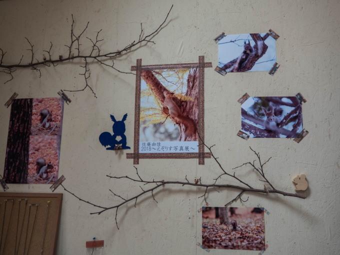 佐藤由佳さんの「2018えぞりす写真展」はじまりました。_f0276498_22184212.jpg