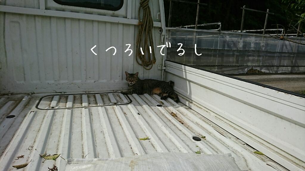 b0187620_18011932.jpg
